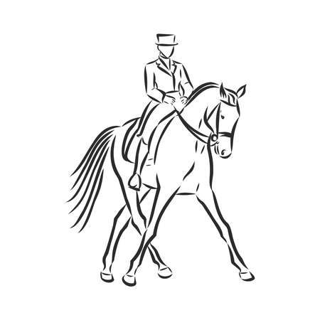 A sketch of a dressage rider on a horse executing the half pass. Stock Vector - 136138856