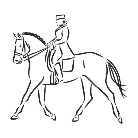 A sketch of a dressage rider on a horse executing the half pass. Stock Vector - 136138861