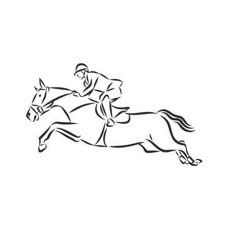 jumping horse,black white picture isolated on white background,vector illustration Stock fotó - 136138869