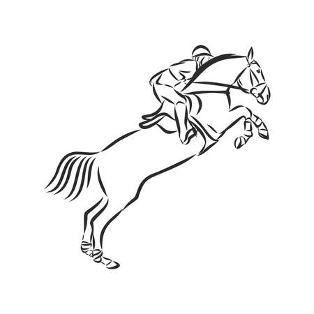 jumping horse,black white picture isolated on white background,vector illustration Stock fotó - 136138865