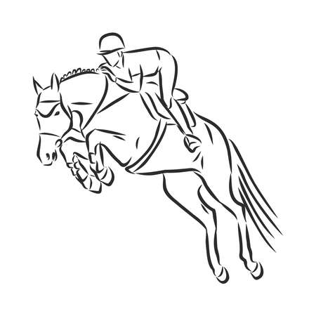 jumping horse,black white picture isolated on white background,vector illustration Stock fotó - 136138864