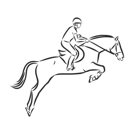 jumping horse,black white picture isolated on white background,vector illustration Stock fotó - 136138867