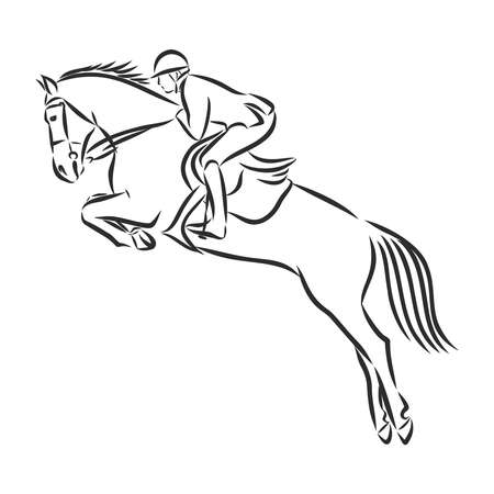 jumping horse,black white picture isolated on white background,vector illustration Stock fotó - 136138870