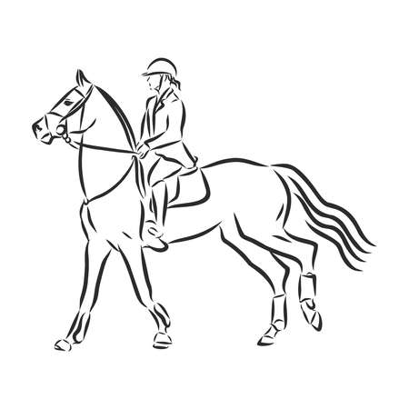 A sketch of a dressage rider on a horse executing the half pass. Stock fotó - 136138934