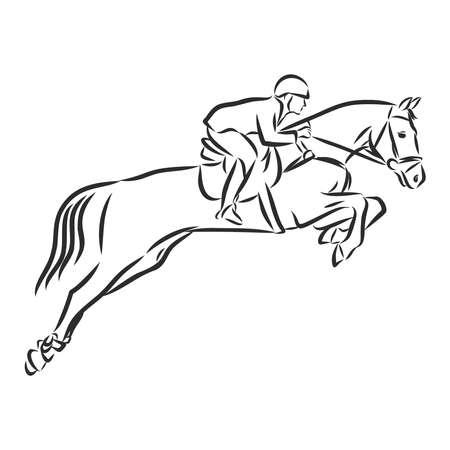 Vector illustration of a racing horse and jockey Vetores