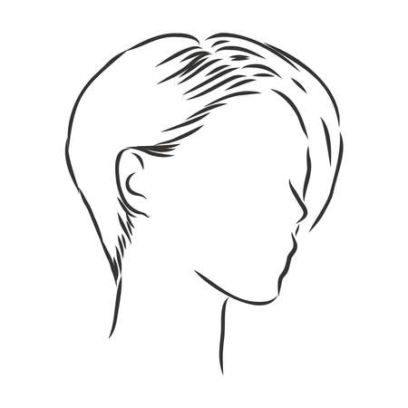 A sketch of a female hairstyle. A freehand vector illustration. 일러스트