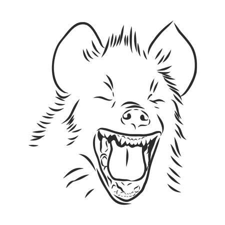 portrait d'une hyène joyeuse qui rit. animal sauvage d'Afrique, illustration de croquis de vecteur