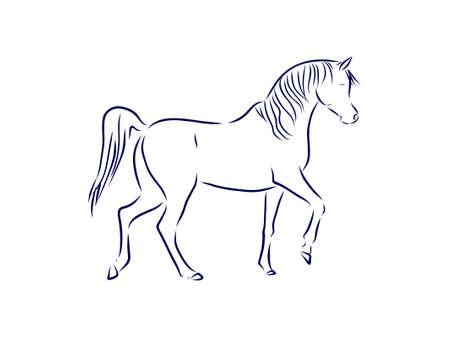 horse walking, pet symbol vector sketch illustration