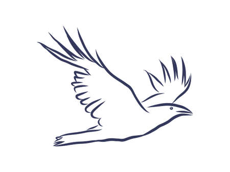 Vector hand drawn raven. Graphic black and white illustration.Rough sketch of crow Stockfoto - 139574867
