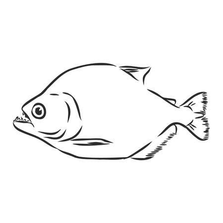 piranha, river predatory fish, sign, silhouette, vector sketch illustration