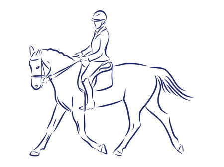 Horseback riding, horsemanship contour vector illustration