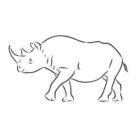 African rhinoceros Wild animal on white background. 向量圖像