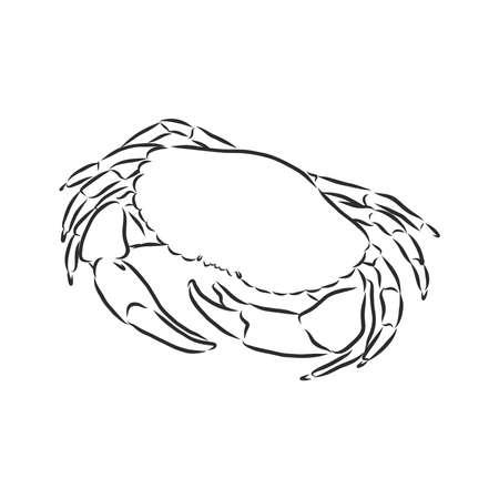 Sea blue striped illustration with crab Vector Illustratie