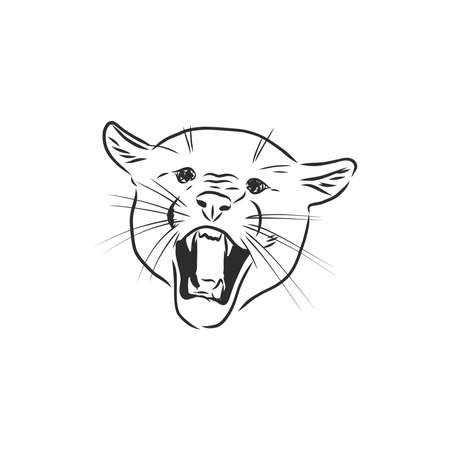 Hand-drawn illustration portrait of puma.