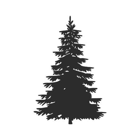 Tree, Christmas fir tree, black silhouette isolated on white background. Vector