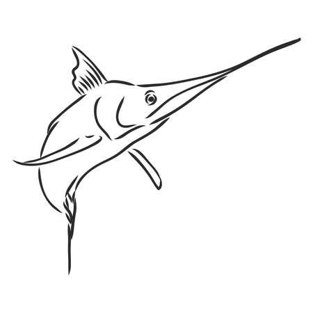Hand drawn swordfish. Vector illustration in sketch style