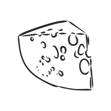 Piece of Cheese. a piece of cheese vector sketch on a white background