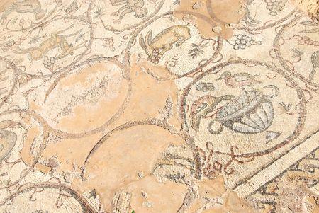 ceasarea: Ancient roman mosaic