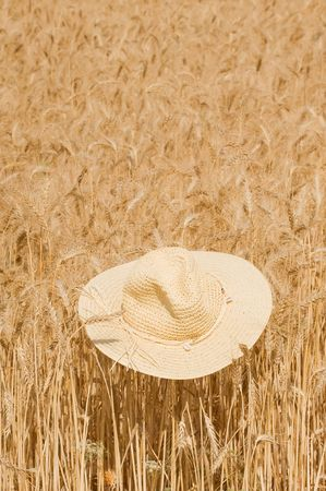 Wheat of field with a straw hat Stock Photo - 5234767