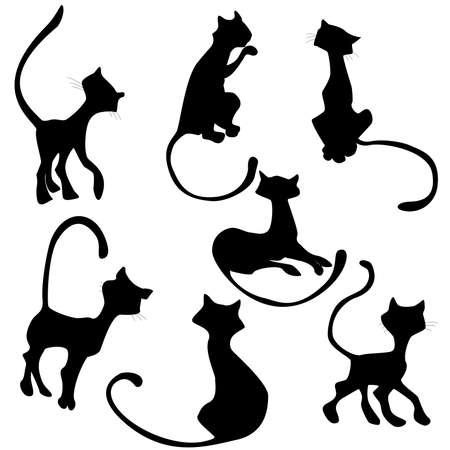 cat silhouette nera in diverse pose set