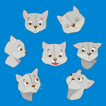 hopeful: Seven cute feline muzzles in cartoon style set Illustration