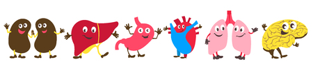 Vector illustration for children. Flat cartoon style. Ornament from human organs. Kidney, liver, stomach, heart, lungs, brain Ilustração