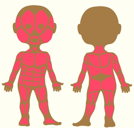 Vector illustration. Flat cartoon style. Silhouette of a child with the image of muscle tissue