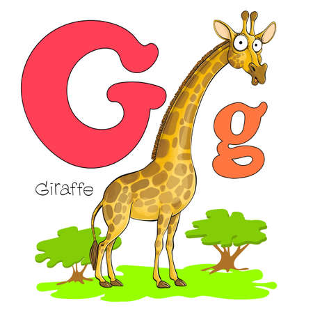 Vector illustration. Alphabet with animals. Big and capital letter G with a picture of a bright cute giraffe Illustration