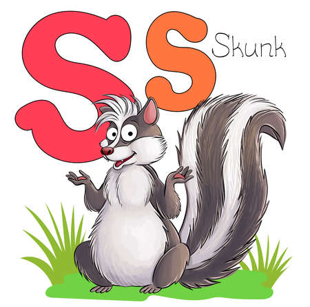 Vector illustration. Alphabet with animals. Large capital letter S with a picture of a bright, cute skunk. Illustration