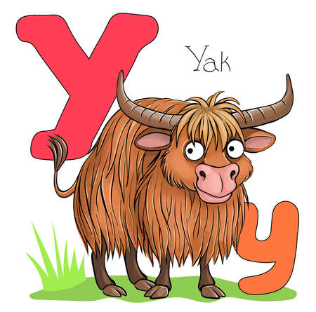 Vector illustration. Alphabet with animals. Large capital letter Y with a picture of a bright, cute yak. Illustration