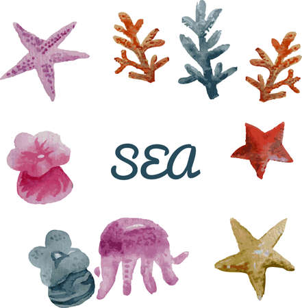 Starfish, coral and flowers isolated on white background