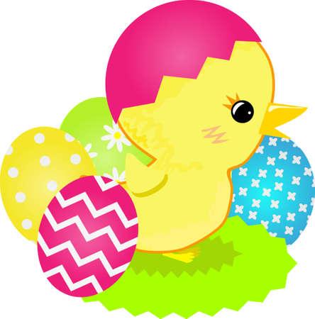 Little chick image illustration