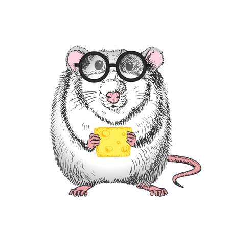 white rat 向量圖像