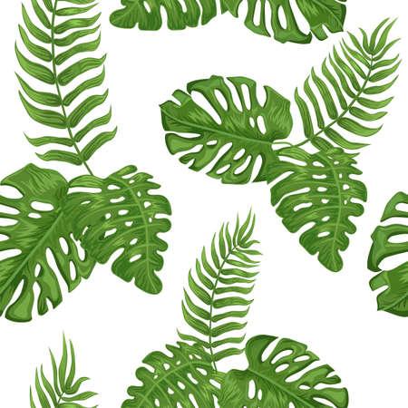 Palm leaves on white background 版權商用圖片 - 122682999