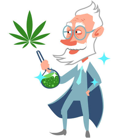 Gray-haired scientist with glasses holding a flask of medicine from cannabis. Production of natural cosmetics and medicines from hemp leaves.