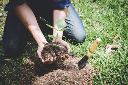 World environment day reforesting, Hands of young man were planting the seedlings and tree growing into soil while working in the garden as save the world, earth day, nature and ecology concept.