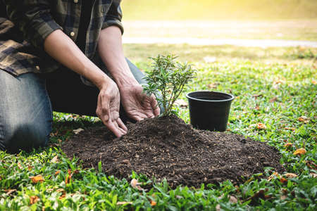 Man planting seedling into soil and protect new growing seedling while working in the garden for reforestation to environment earth Reklamní fotografie
