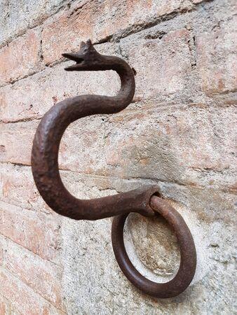 iron: iron Snake