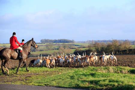 Fox Hunt par les agents de la faune à cheval Banque d'images - 25474549