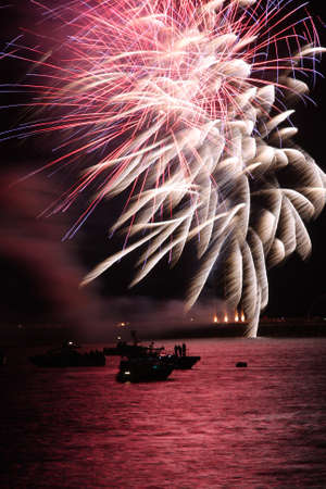 annually: Fireworks exploding in a dark sky