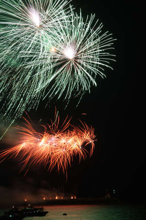 guy fawkes night: Fireworks exploding in a dark sky