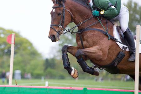 salto de valla: El caballo que salta sobre una cerca en un evento