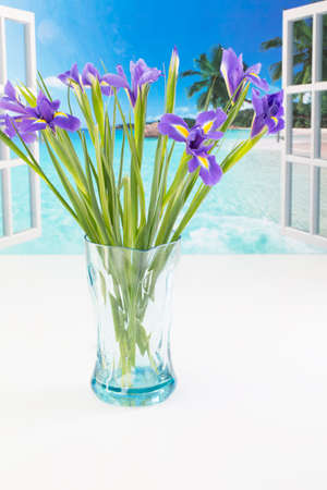 A vase of flowers by an open window Stock Photo