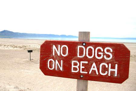 Instructions pour les chiens sur une plage au bord du lac grand. Banque d'images - 3137340