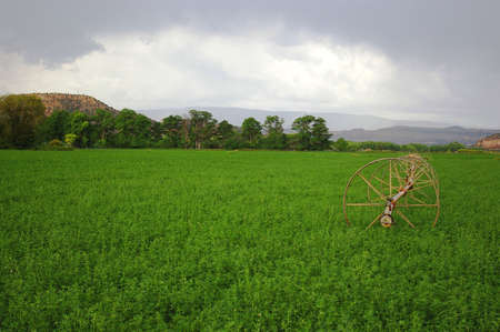Bright green field with dark clouds and a wheel line. Imagens - 3520329