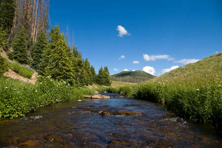 A clear creek and green meadow in a beautiful mountain valley.