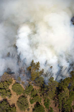 Clouds of smoke rising from a wildfire. Imagens - 5316123