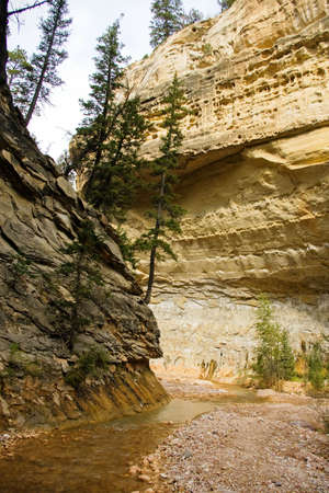 A creek winds its way through a narrow canyon. Stock Photo - 5544524