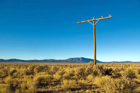 Abandoned telephone pole in the middle of a high desert.
