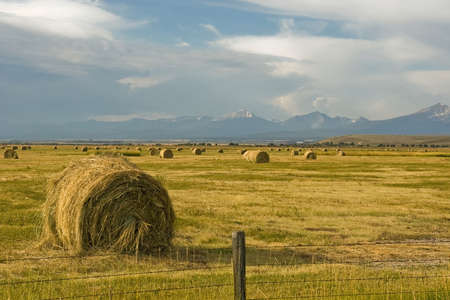 Bales of hay sit in a ranch meadow at the end of summer. Stock Photo - 7766112